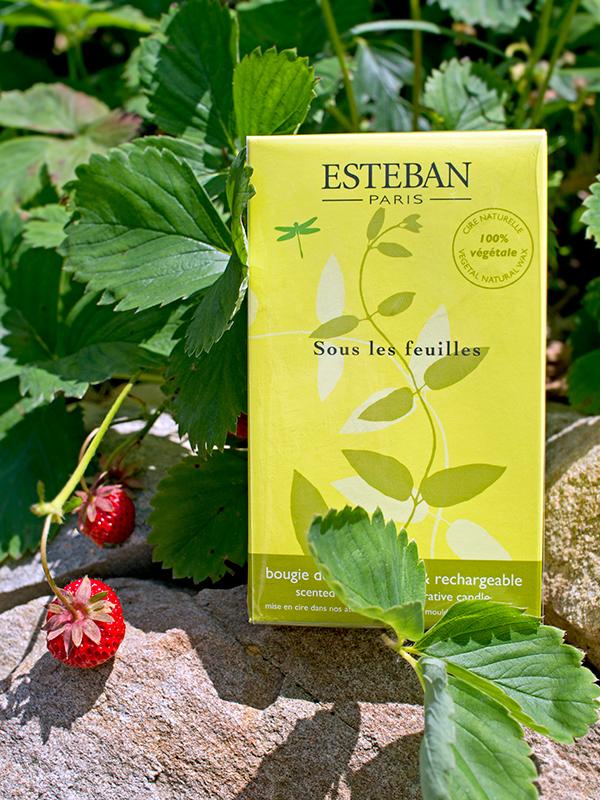 esteban-decorative-candle-review-ароматическая-свеча-отзыв2.jpg