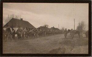 Первая партия пленных выходит из города.