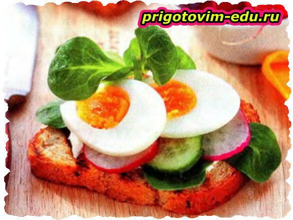 Бутерброды с редисом и яйцом