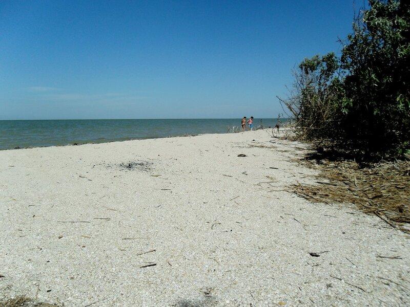 Места обширных пляжей ... SAM_2122.JPG