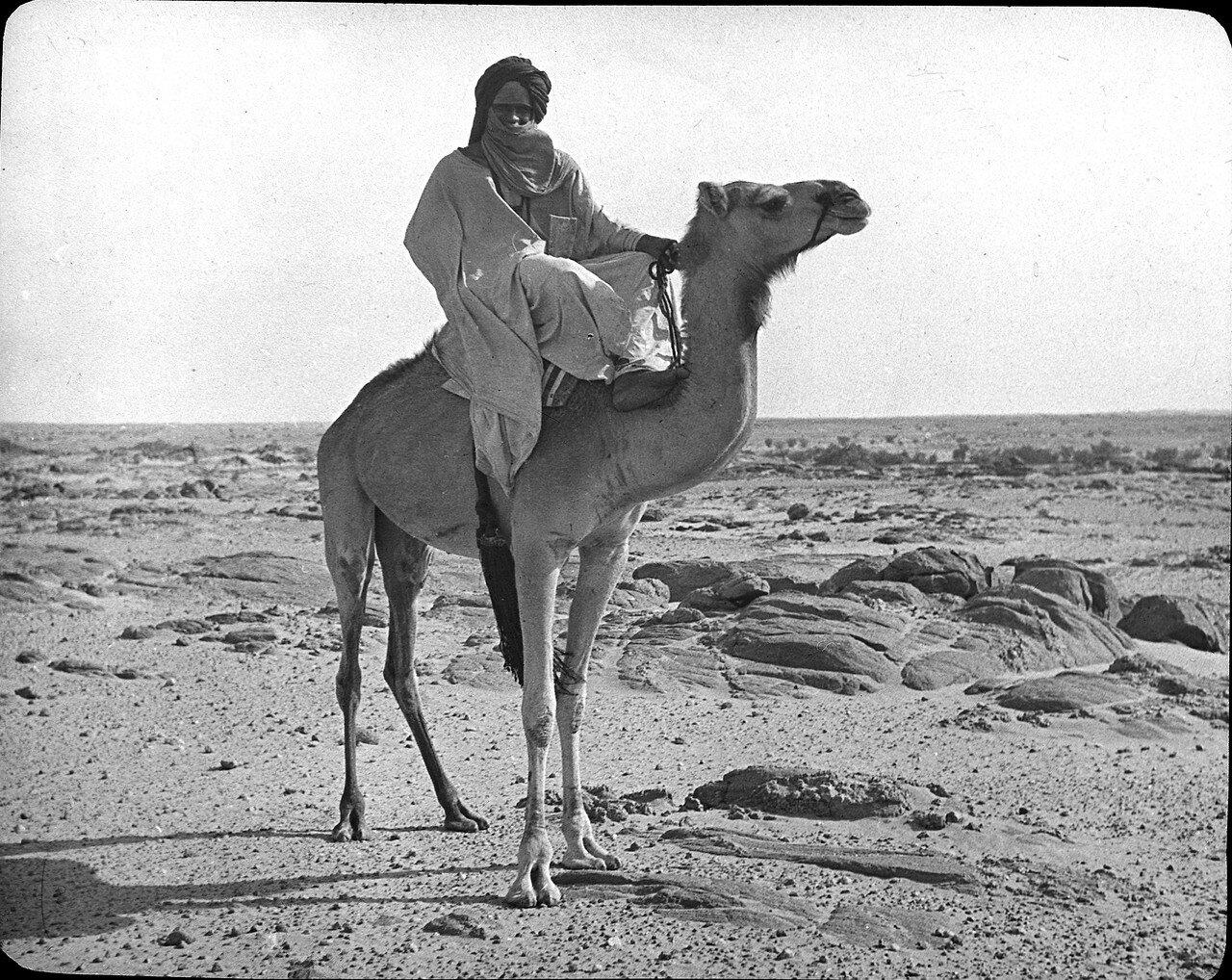 Мали. Туарег
