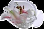 47596529_chrismist_fleur_dans_un_bocal.png