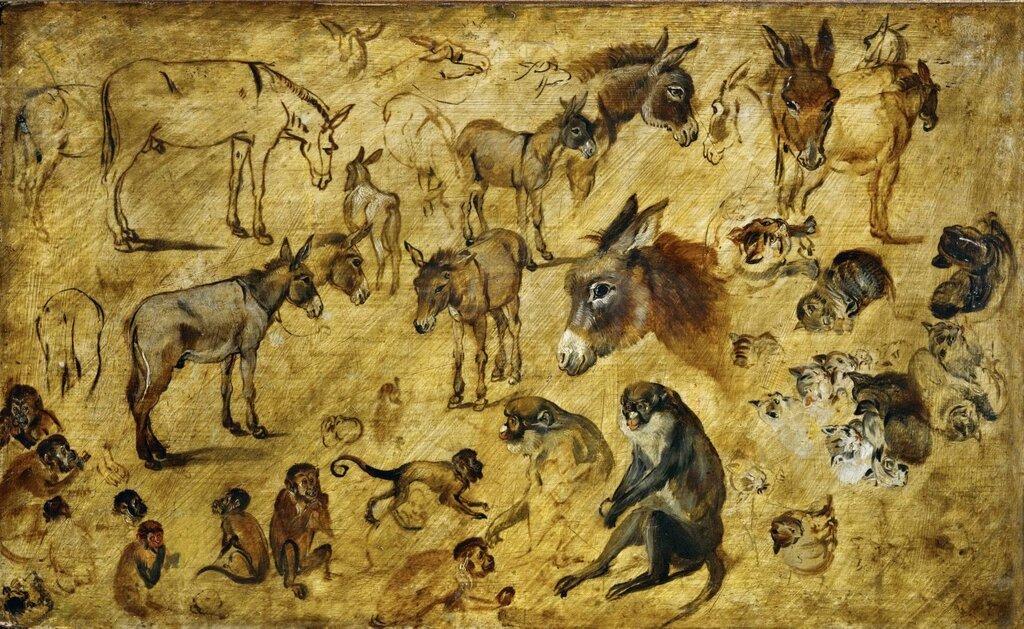 Штудия зверей (ок.1616) (Вена, Музей истории искусств) (4,21 МБ).jpg