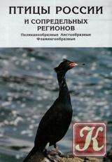 Книга Птицы России и сопредельных регионов (Том 7)