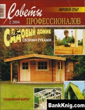 Журнал Советы профессионалов №2  2004