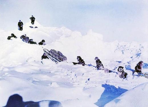 Антарктика 1915 года