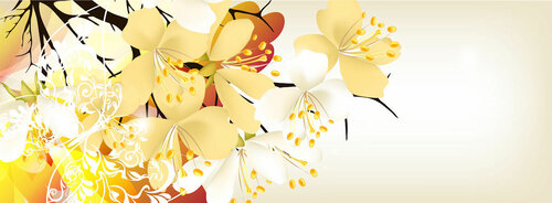 Collection of flower vector backgrounds