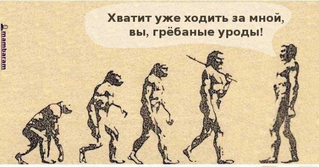 Думаете вы лучше обезьяны? Попробуйте повторить ...