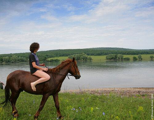 Урал. Башкирия. Нугуш. Лошади на стоянке. Езда без седла