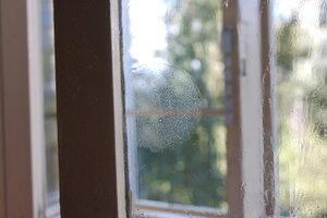 Круг на окне