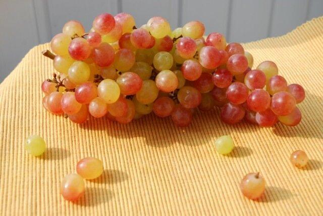 гроза и виноград 028.jpg