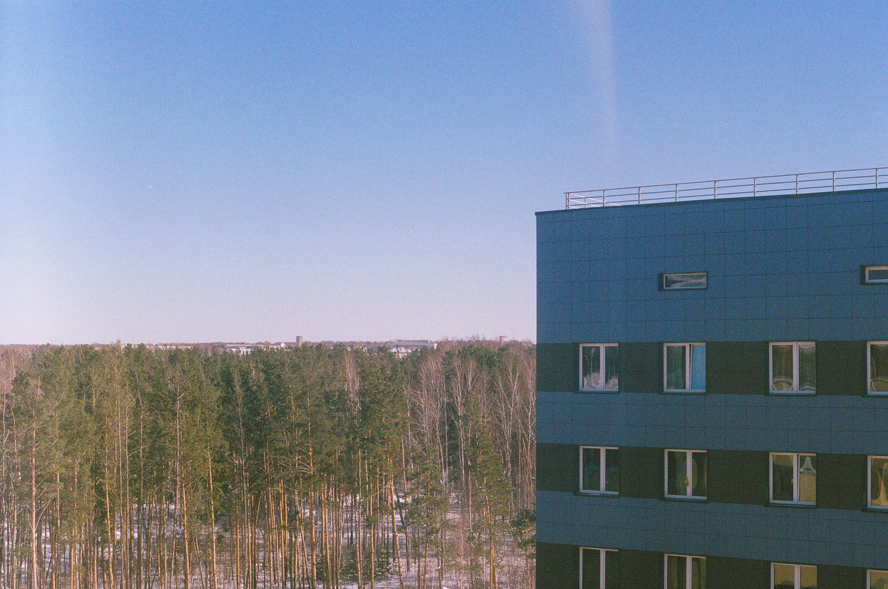 Вид из окошка. Зоркий-4, И-61 f/8, fuji superia 400
