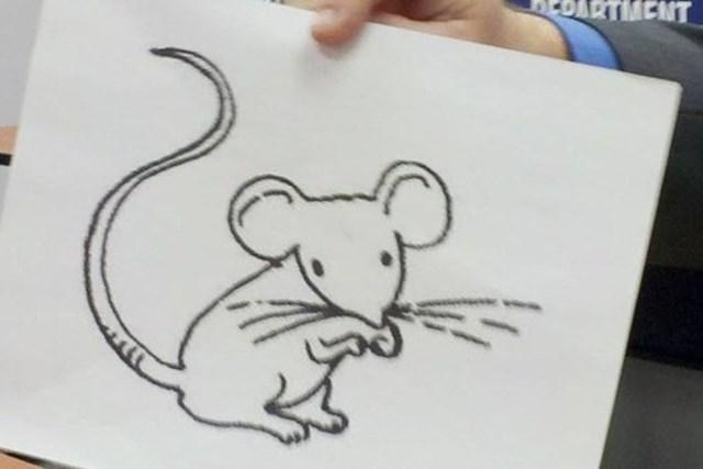 В США мыши наркоманы уничтожили улики