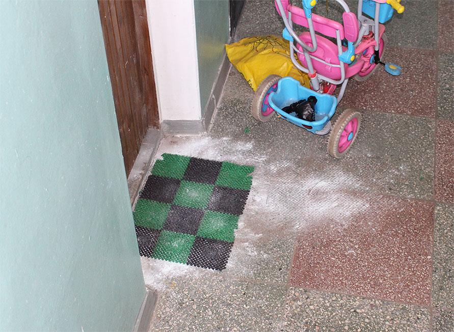Бабака насрала под дверью