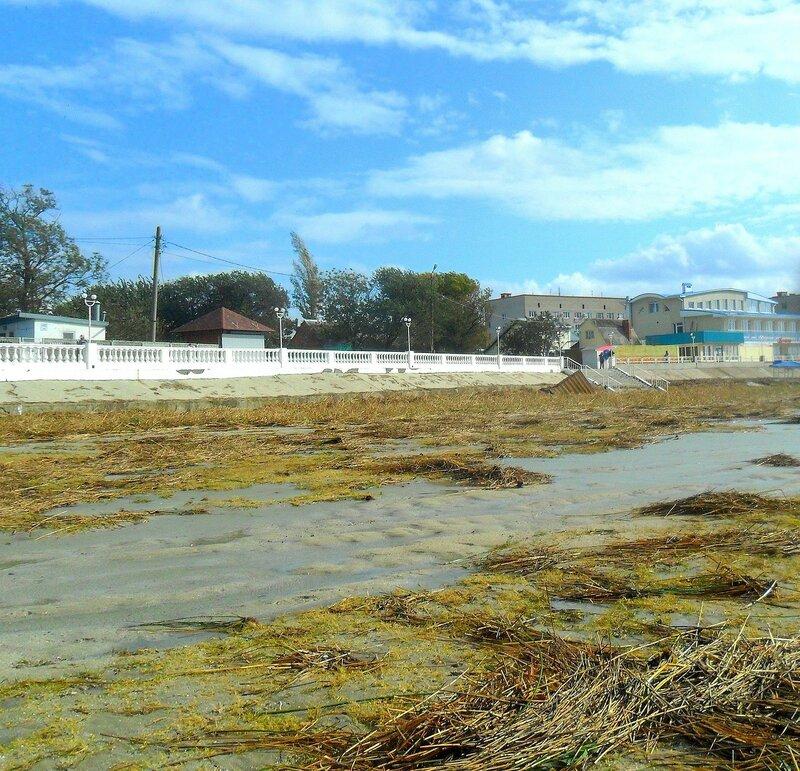 После бури, сентябрь, Азовское побережье, осенние картинки