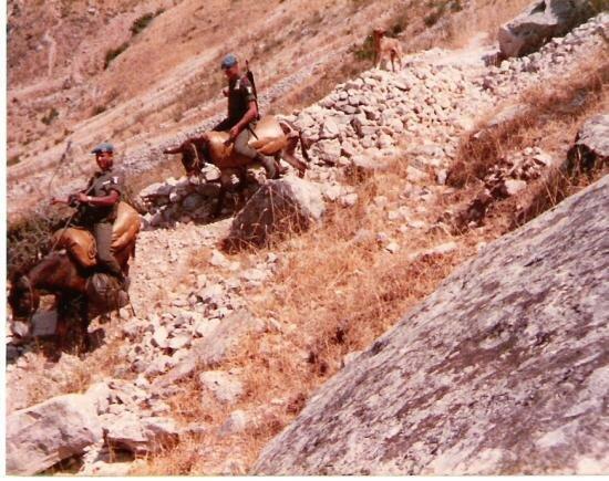 4e-cie-sud-liban-centrale-lectrique-pas-quitter-le-sentier-gare-aux-mines-82-a-cout-cher-la-4.jpg