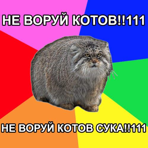 http://img-fotki.yandex.ru/get/3000/probka28.0/0_192f_f1ff92a_L.jpg