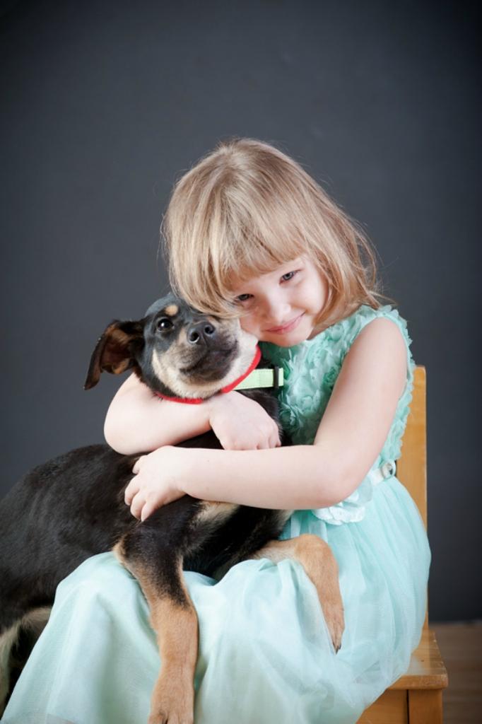 Софи собака из догпорта