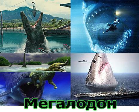 Самые большие животные в мире, существовавшие на земле (фото 16)