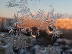 Слёзы зимы
