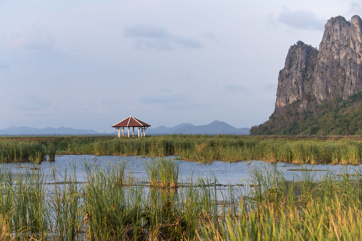 Фотография 14. Красота да и только! Болото Lotus Swamp в национальном парке Као Сам Рой Йот в Таиланде. (640, 100, F=4.5, 1/1600, Никон Д610, линза Никкор 70-300)