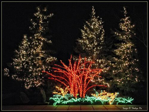 Garden d'Lights 2008 - 117
