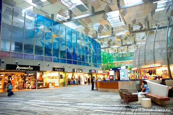 19 марта 2013.  Аэропорт - это воздушные ворота любой страны, и если Сингапур по праву называют одной из самых...