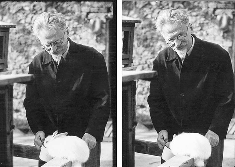 Buchman's camera captured Trotsky feeding his rabbits, part of his daily routine. 1940