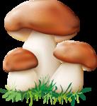 грибочки (6).png