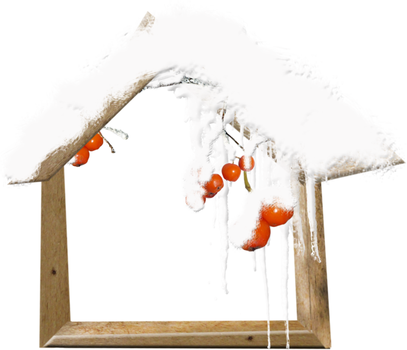 MRD_FrostyFriends_wooden snowy house-twig.png