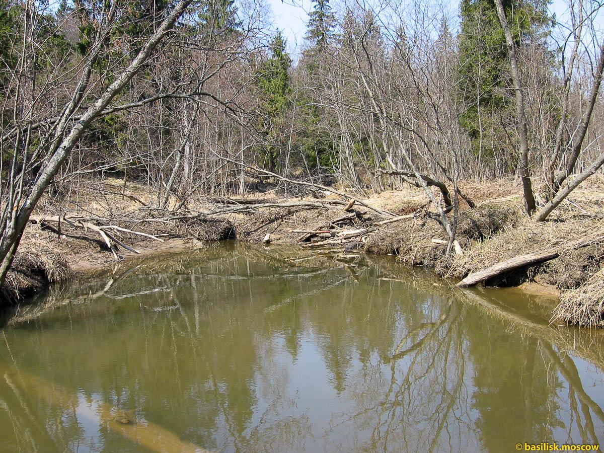 Река Чисмена. 2006