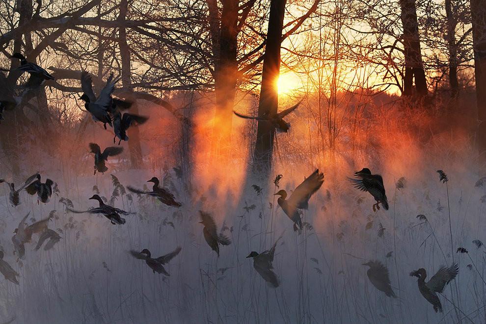 Фотографии прекрасных пейзажей 0 178576 1a4c2908 orig