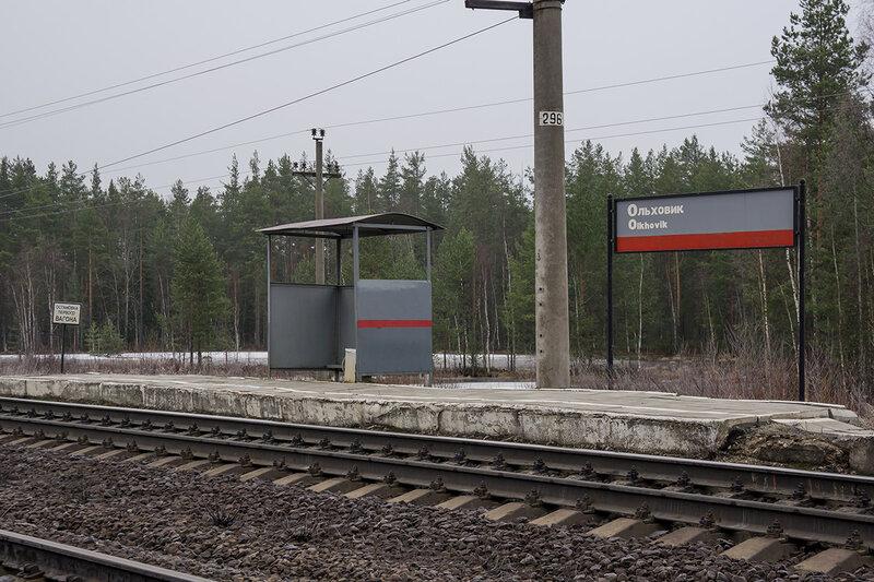 Ольховик