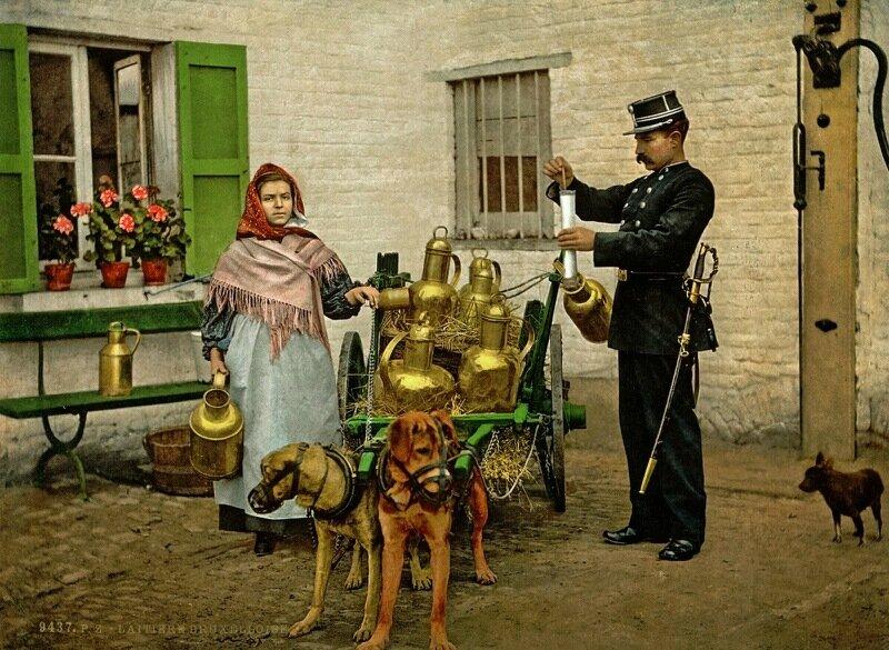 A Brussels milkmaid, ca. 1890-1900.jpg