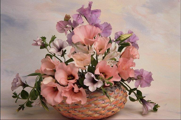 Цветы, букет, природа, клипарт