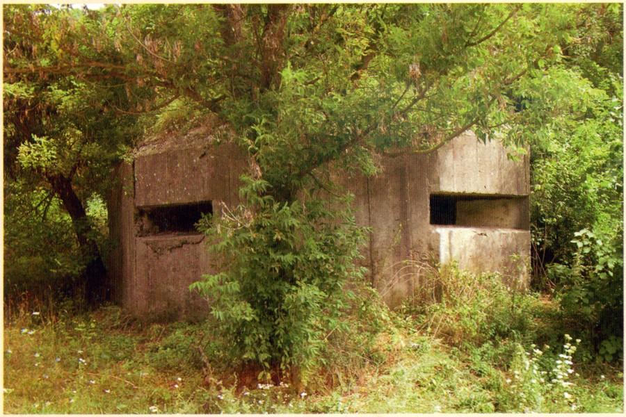 ДОС в районе п.г.т. Мурованые Куриловцы (Могилёв-Ямпольский укрепрайон)