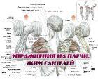 Книга Упражнения на плечи. Жим гантелей