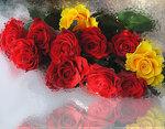Розы на льду.