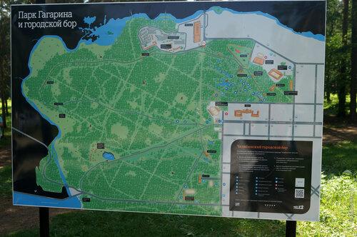 Карта Парка Гагарина и городского бора