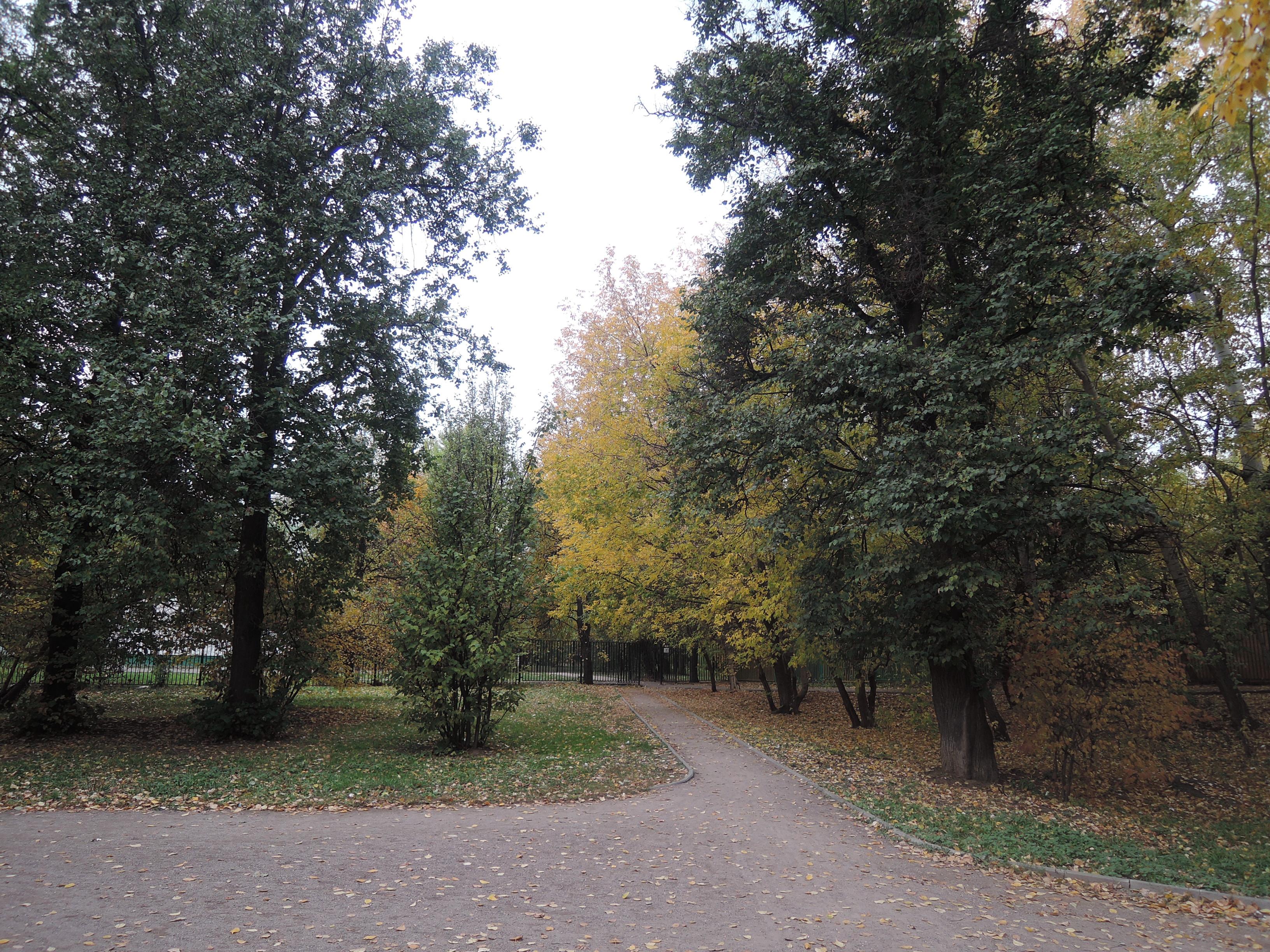 осень 071.jpg
