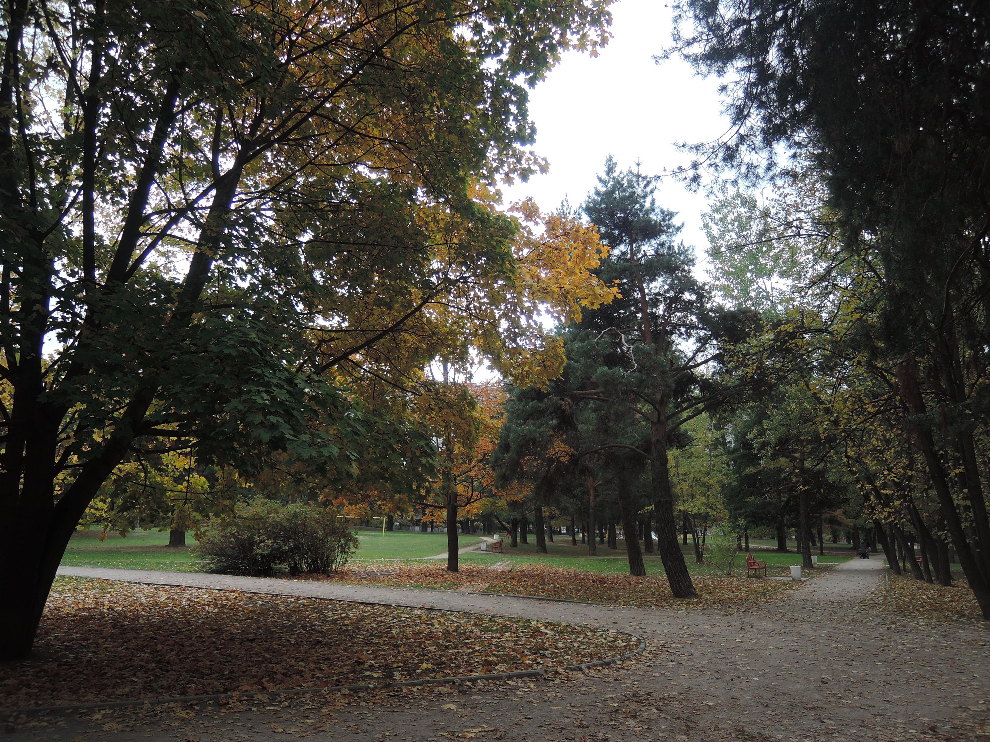 осень 072.jpg