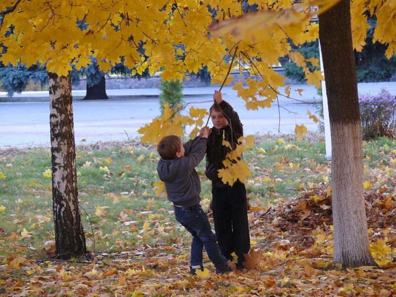 Глеб и Егор тоже радуются осенним листьям.JPG