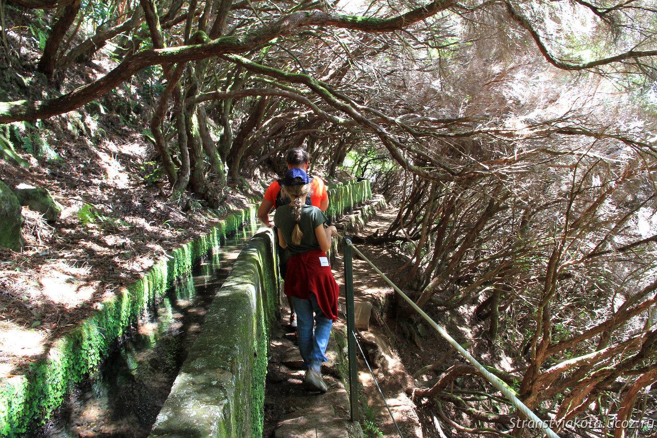 Мадейра, левада 25 фонтанов