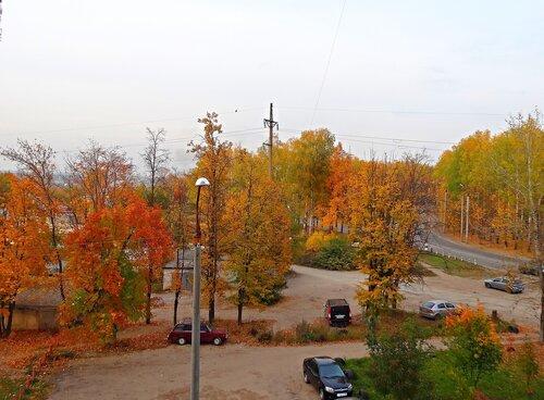 Золотая осень в городе