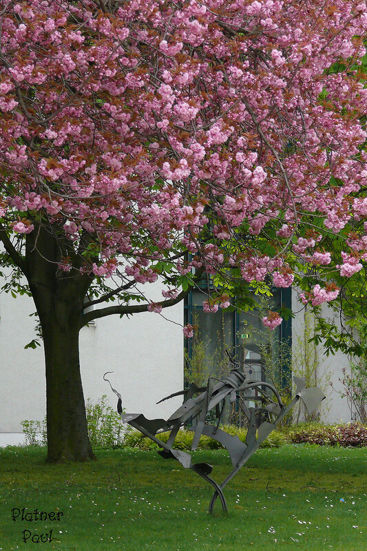 весна в моем городе....