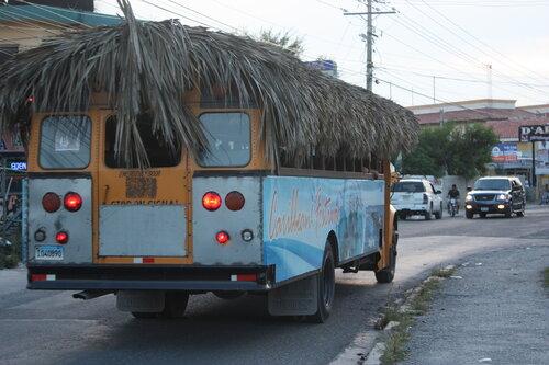 Автобус!:))