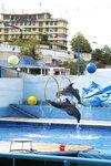 Севастополь'08. Дельфинарий.