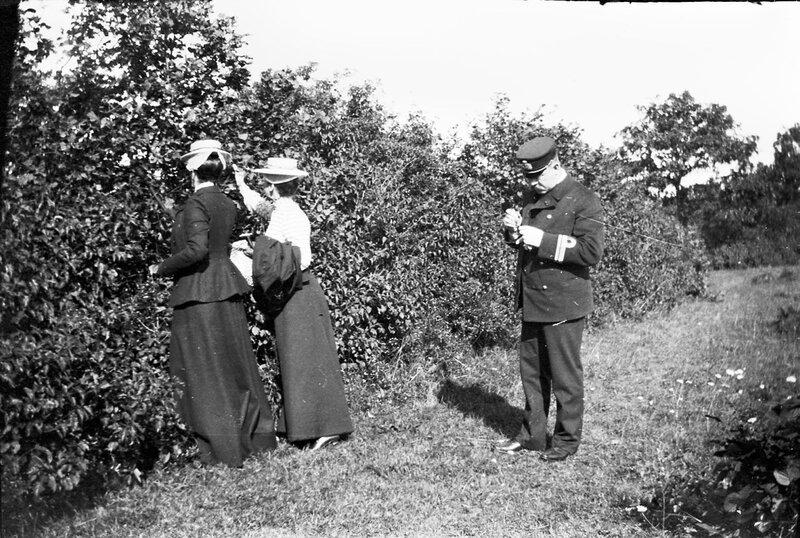 Две дамы и мужчина возле изгороди, 1900