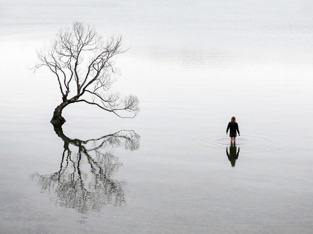 7. Заключение, Новая Зеландия. (© Alexandre Gendron)