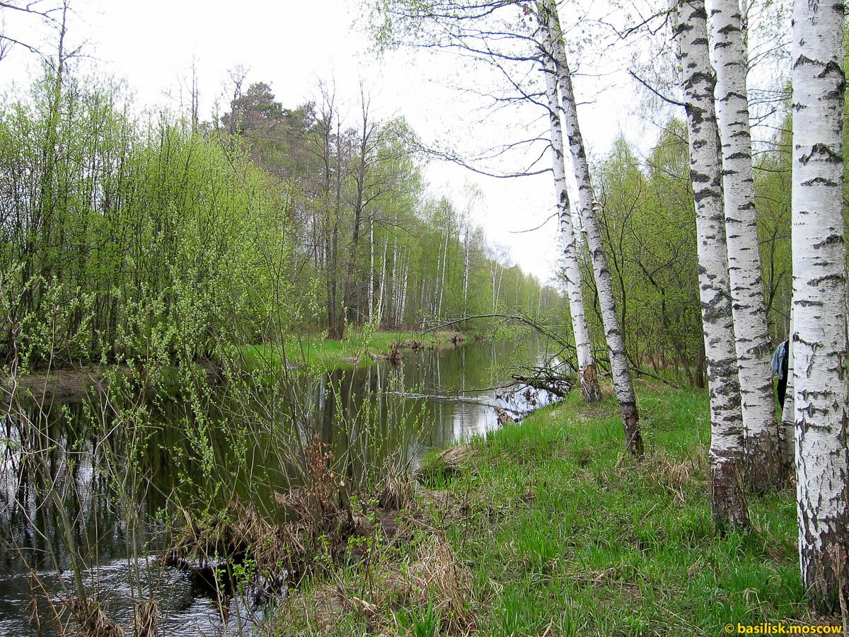 Река Большая Ушма. Май 2005.